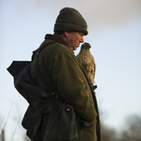 Dalemews Goshawk Hall of Fame - ©Dalemews - Alan fellow austringer